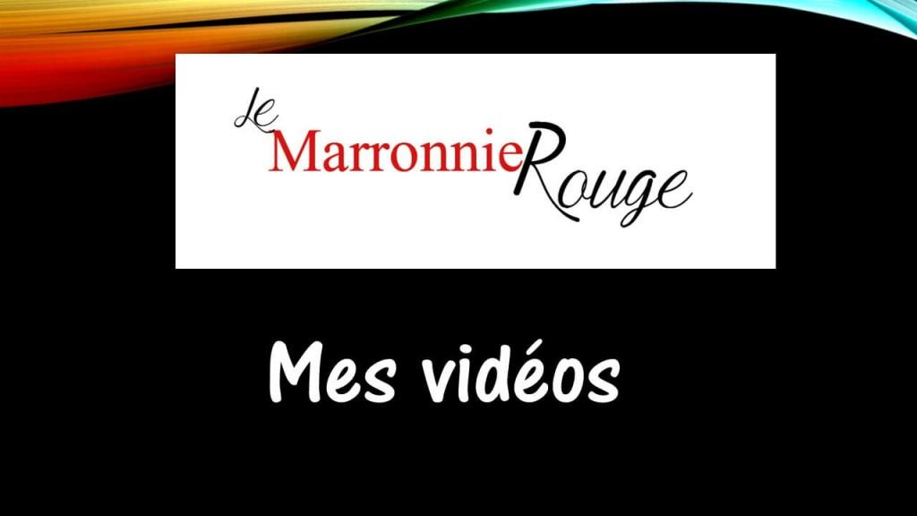 logo vidéo compressé