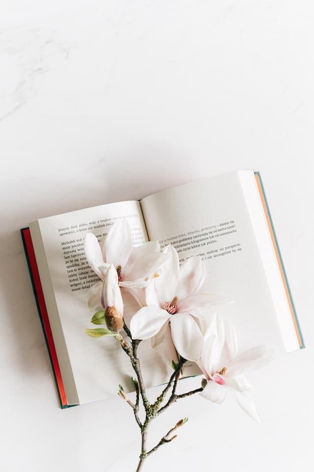 6 étapes pour écrire un livre